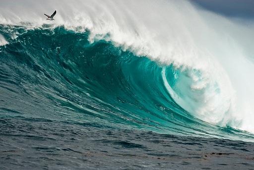Surfing in Todos Santos