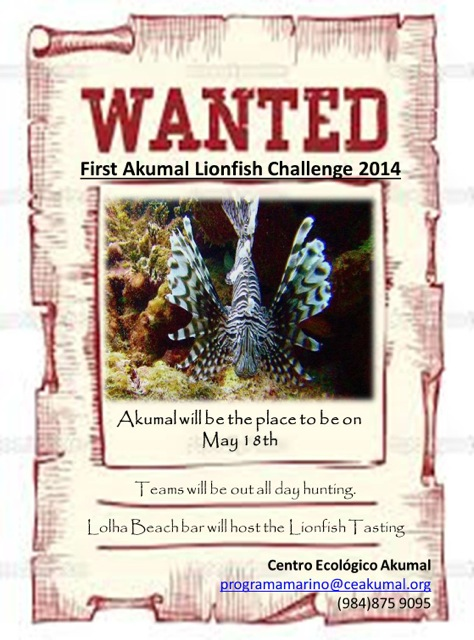 1st Annual Lionfish Challenge Akumal On May 18th, 2014
