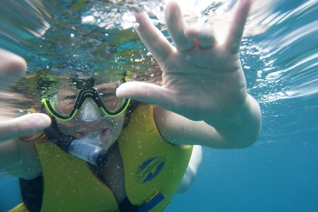 Better Snorkeling - Puerto Morelos or Akumal